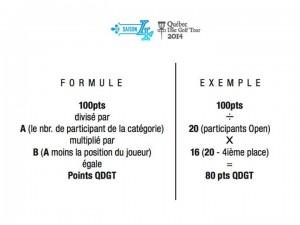 qdgtour2014_points